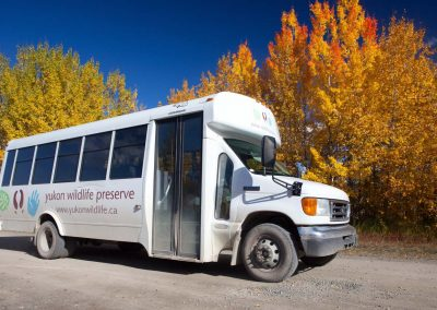 web-IMG_9938 - bus fall colours - YWP - Sep 2014 - Jake Paleczny