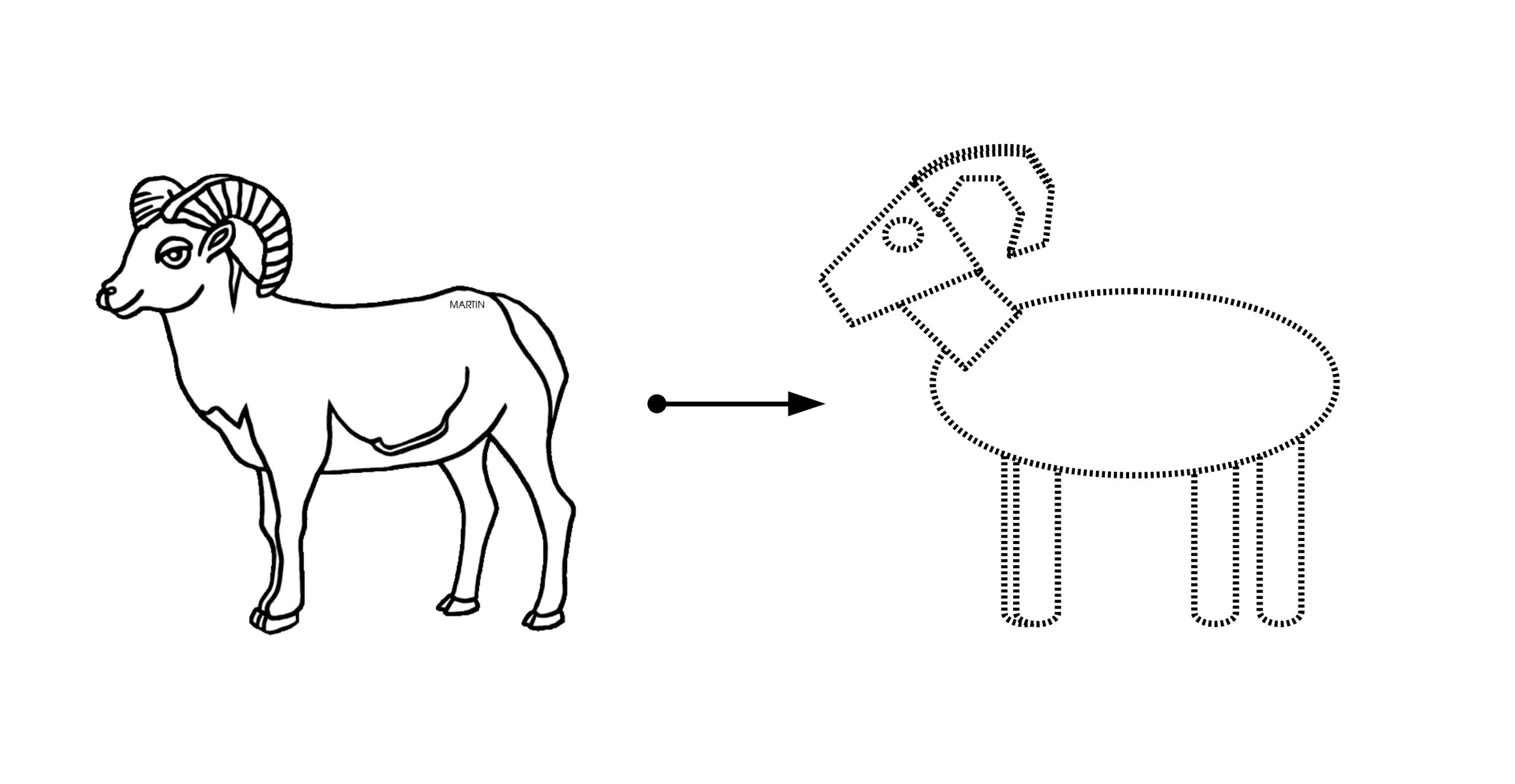 Line drawing showing a sheep being represented by simple shapes for surface area estimation.
