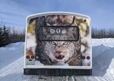 Photo of back of bus with lynx face on the back.