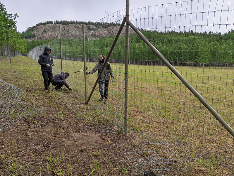 Photo of YWP staff working on installing fencing.